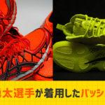 【完全版】田臥勇太選手着用のバッシュ歴代すべて調べてまとめました!