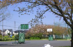 【完全版】埼玉のバスケットコートまとめ!屋内・屋外の全30施設の予約方法など総力調査しました!